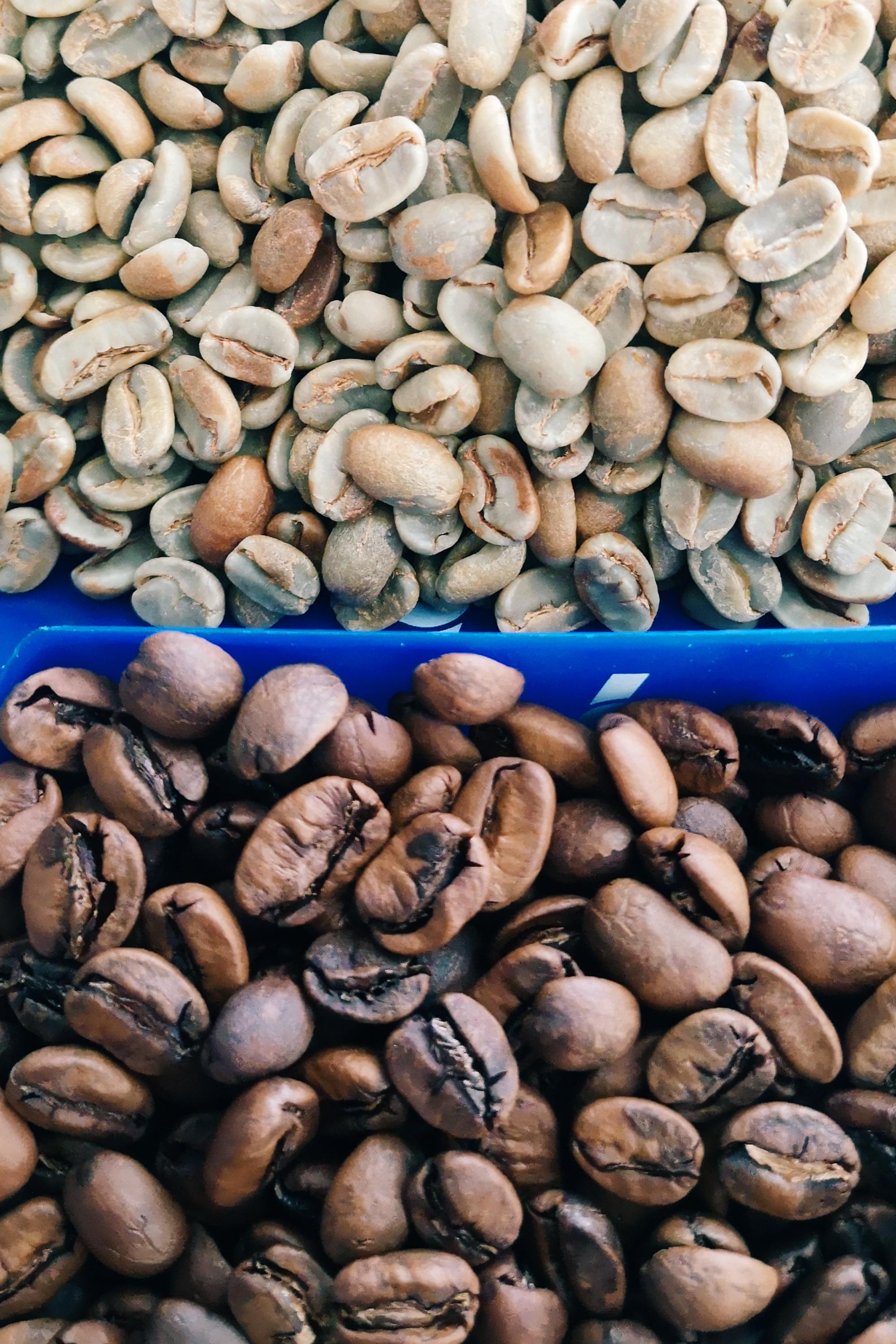 roasted coffee vs green coffee